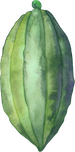 cocoa-illustration-green